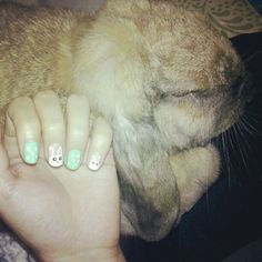 My sister's bunny,and a cute bunny nail design I made on my own nails.