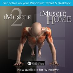 Great News #Fitness Lovers! iMuscle 2 & iMuscle Home are now available on Windows - http://applications.3d4medical.com/apps_home#health-fitness #health #workouts