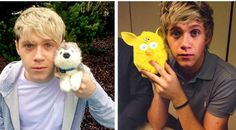 Niall Horan transformation