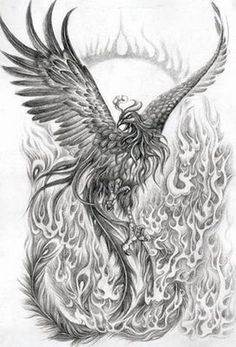 Phoenix / feathers/ fire De-tails