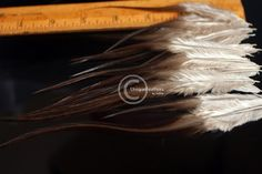 Brown Feathers Natural Feathers Craft Feather by uniquefeathers