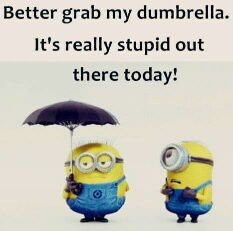 Minion wisdom, great.