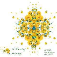 """""""A Burst of Sundrops"""" by judymjohnson on Polyvore"""