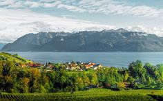 Set on the shores of Lake Geneva, Lausanne is one of Switzerland's most scenic cities.