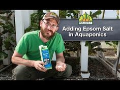 Adding Epsom Salt to Aquaponics Systems - YouTube