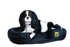 K9 Ballistics Mini TUFF Bed  Black 24x18x6 * Check this awesome product by going to the link at the image.(This is an Amazon affiliate link and I receive a commission for the sales)