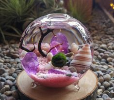 Footed container measures appox. 3.5 inches in diameter x 3.75 inches tall - These look great with multiple moss balls! Select your desired
