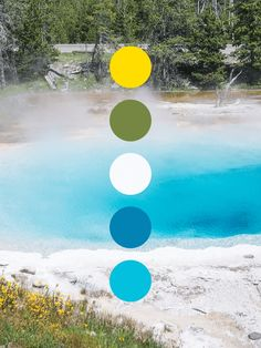Color scheme inspired by the pools and wildflowers in Yellowstone National Park Nature Color Palette, Colour Pallette, Or Noir, Paint Color Schemes, Colour Board, Color Inspiration, Sims, Wildflowers, Colours