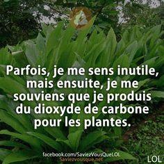 Parfois, je me sens inutile, mais ensuite, je me souviens que je produis du dioxyde de carbone pour les plantes. | Saviez Vous Que?