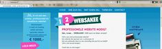 zanger-band website nodig? kijk op www.12websakee.nl