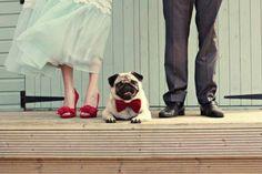 Hond op je bruiloft - Leuke trouwfoto's gegarandeerd #bruiloft #trouwfoto #poses #idee #inspiratie #trouwen #wedding #photo #inspiration | ThePerfectWedding.nl