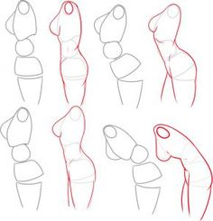 #Anatomia | how to draw a female body step 5