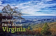 Interesting Facts About Virginia https://mentalitch.com/interesting-facts-about-virginia/