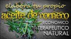 Aceite de Romero preparado en casa | http://elreceton.com/aceite-de-romero-aprende-elaborar-tu-propio-aceite/ |