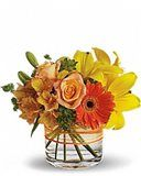Search Results - Teleflora Simply Beautiful, Beautiful Flowers, Fresh Flower Delivery, Local Florist, Fresh Flowers, Flower Arrangements, Houston, Glass Vase, Wedding Flowers