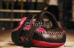Punching Mitts ( download here ) http://us.fotolia.com/p/204830000/partner/204830000