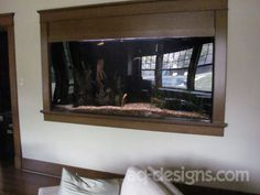 375 gallon aquarium at a residence in the Hillcrest area.  This was custom built to fit beside/under a staircase on the other side of the wall.