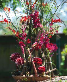 Flowers. Bloemen. Red. Rood. Dahlia. Kniphofia.