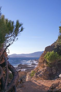 Cavalaire-sur-Mer - I remember as a child walking down through the pine trees onto the beach. Happy days!