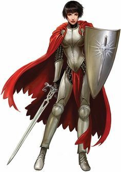 sword and shield warrior