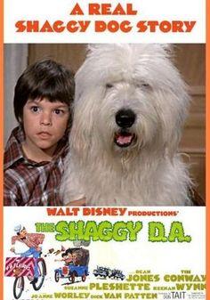 The Shaggy DA - 1970s Disney version