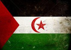 Vintage Western Sahara Flag