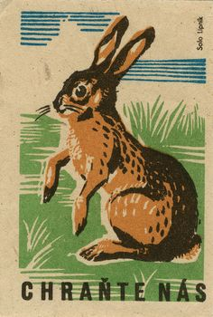 Czech rabbit matchbox label vintage: Save Us