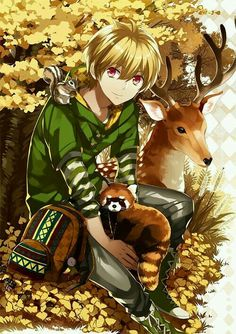 Little anime boy in forest with his animal friends