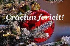 Winter Wonderland, Christmas Bulbs, December, Poster, Holiday Decor, Happy, Romania, Merry Little Christmas, Flowers