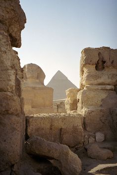View of the Sphinx and great pyramid. This was as close as I got: the big cat was fenced off.