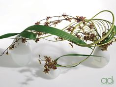 Designed by Hitomi Gilliam Products by Accent Decor - site under construction Creative Flower Arrangements, Ikebana Flower Arrangement, Ikebana Arrangements, Beautiful Flower Arrangements, Floral Arrangements, Flower Show, Flower Art, Art Floral, Ikebana Sogetsu