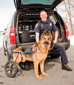 disabled dog with police officer by a truck - WomansDay.com