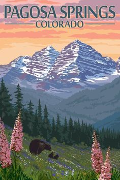 Aspen, Colorado - Bear and Spring Flowers - Lantern Press Artwork Giclee Gallery Print, Wall Decor Travel Poster), Multi Pagosa Springs Colorado, Aspen Colorado, Durango Colorado, National Park Posters, National Parks, Big Sky Montana, Destinations, Poster Prints, Art Prints