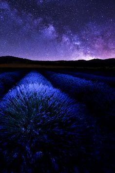 Stars and Stripes, Luberon, France,by DB Photographe, on 500px.