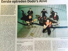 Dodo's Alive
