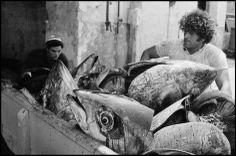 Leonard Freed. ITALY. Sicily. Egadi Island. Tuna Fishing. 1975.