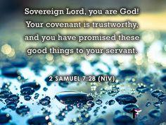 <b>Samuel</b> <b>7:28</b> | Scriptures and Spiritual…