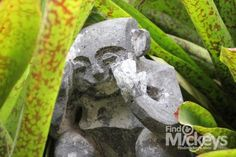 Near the entrance of Aulani Conference Center is this very well hidden Menehune.