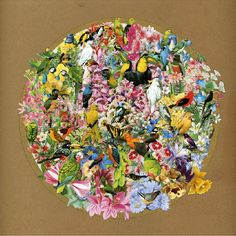 Seiko Kato and Intricate Collage