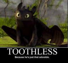 Toothless (: My cat is pretty much this dragon.