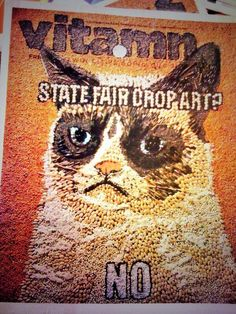 Awesome grumpy cat ad