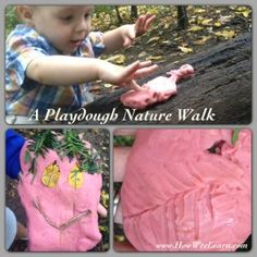 Playdough Imprints on a Nature Walk from How Wee Learn