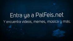 Palfeis.net ...... - Pal Feis