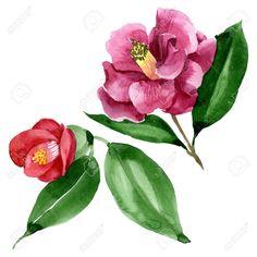 Wild spring l - Floral Garden Ideas Botanical Flowers, Floral Flowers, Wild Flowers, Watercolor Drawing, Camellia, Art Logo, Branding Design, Logo Design, Garden Design