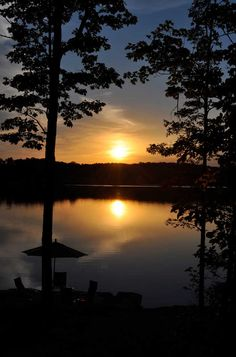 Serenity on the shores of Innsbrook's 236-acre Alpine Lake. #100lakes
