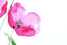 Bloemen Ontwerp Met Papavers - Downloaden van meer dan 56 Miljoen hoge kwaliteit stock foto's, Beelden, Vectoren. Schrijf vandaag GRATIS in. Afbeelding: 5620202
