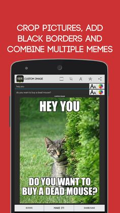 19 Best Meme Generator Images Funny Stuff Memes Funny Memes