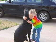 Bea de Terra: Meredith und der Hund Abbey