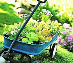 outdoor-home-decorating-backyard-ideas-planters-28.jpg 500×434 pixels