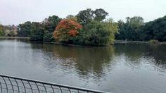 Lake at Leazes park, Newcastle